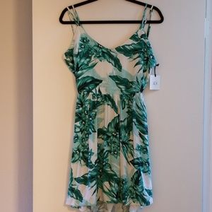Jack BB Dakota open back floral dress